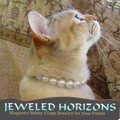 Pearl Cat Collar with Magnetic Safety Clasp door jeweledhorizons, $25.00