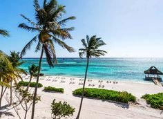 The Westin Punta Cana - The 9 Best Hotels in the Dominican Republic   Jetsetter