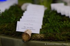 Wine corks holding Escort Cards for WEdding Reception at the Perot Museum in Dallas Museums In Dallas, Dallas Dfw, Night At The Museum, Museum Wedding, Wine Corks, Wedding Reception, Wedding Planner, Place Card Holders, Weddings