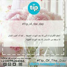 أبشر :)  #allah #tip_of_the_day #life #daily #sunan #teachings #islamic #posts #islam #holy #quran #good #manners #prophet #muhammad #muslims #smile #hope #jannah #paradise #quote #inspiration #ramadan  #رمضان #الله #الرسول #اسلام #قرآن #حديث #سنن #أمل #جنة
