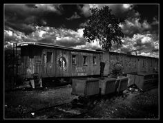 abandoned trains | Nevada City Ghost Town, Montana