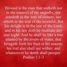 Walk Through The Bible, Miracles Of Jesus, Luke 9, Bible Plan, Daily Word, Two Fish, New Living Translation, Looking Up, Blessed