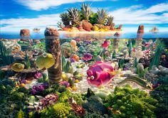 In this photo coralscape - an underwater scene with coral made of broccoli, tropical fish made of various fruits and vegetables, and a pineapple and coconut island. Description from theblogismine.com. I searched for this on bing.com/images