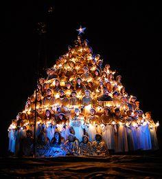 80th Belhaven Singing Christmas Tree, Jackson, Mississippi