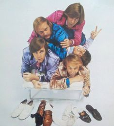 The BeaCh boys Carl Wilson, Dennis Wilson, The Beach Boys