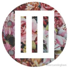 paramore bars logo over floral by eldercunningham