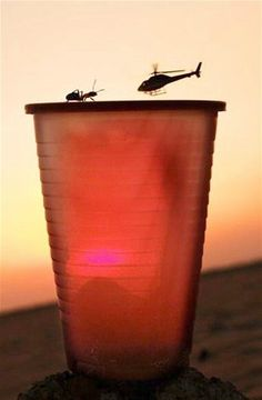 An ant crawls on the rim of a cup as a helicopter flies through the air in the distance.