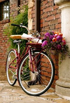 bicycle with basket of flowers - Google Search