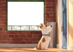 The Secret Life of Pets Kids Transparent PNG Frame