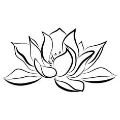 water lily line drawing - Google Search