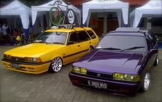 Yellow purple vt