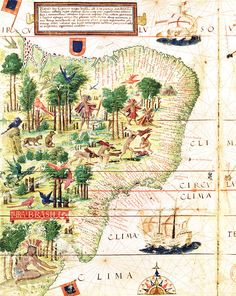 A chart of Brazil by the Portuguese cartographer Fernão Vaz Dourado, 1571.