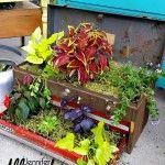 31 stunning low budget garden pot and container ideas (free) Diy Planters, Planter Boxes, Garden Planters, Planter Ideas, Tiered Planter, Old Tool Boxes, Small Vegetable Gardens, Vegetable Gardening, Gardening Tips