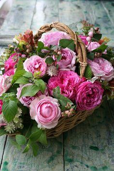 Basket with roses  ᘡℓvᘠ□☆□ ❉ღϠ□☆□ ₡ღ✻↞❁✦彡●⊱❊⊰✦❁ ڿڰۣ❁ ♡༺✿༻♡·✳︎· ❀‿ ❀ ·✳︎· FR DEC 9, 2016 ✨ ✤ॐ ✧⚜✧☀️ ❦♥⭐♢∘❃♦♡❊ нανє α ηι¢є ∂αу ❊ღ༺✿༻✨♥♫ ~*~ ☀️☀️♪♕✫✦⊱❊⊰●彡✦❁↠ ஜℓvஜ