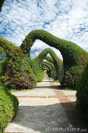 Картинки по запросу amazing gardens