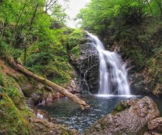 Cascada de Xorroxin, valle de Baztán (By @jmduartefoto / Instagram)