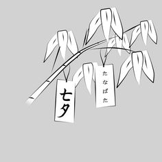 tanabata nyc 2015