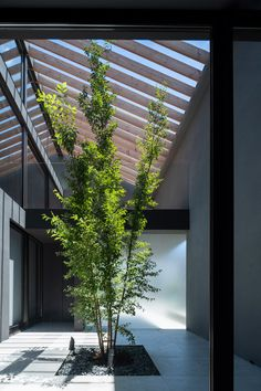 Leaf House has blank metal facade to hide tree-planted courtyard