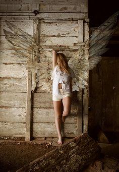 Angel | 天使 | Ange | ангел | Angelo | Angelus | ángel | Wings | Photography |