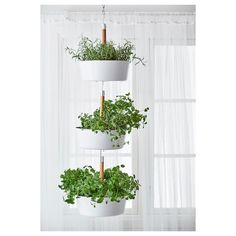 BITTERGURKA Hanging planter, white BITTERGURKA hanging planter - Use a single one or hook a few planters together to create a vertical herb garden indoors. Hang your herbs by a window, then unhook and bring to the table or cooking pot for fresh herbs with Herb Garden In Kitchen, Kitchen Herbs, Herbs Garden, Garden Tips, Garden Art, Kitchen Garden Window, Diy Herb Garden, Herb Garden Design, Garden Windows