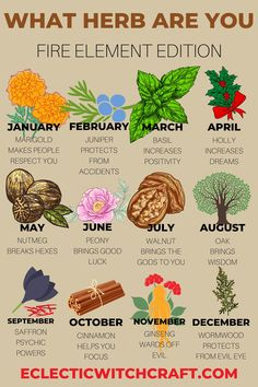 What herb do you need? Find out based on your birth month. Herbs for witchcraft. Herbs witch. List of herbs for witchcraft. Basic herbs for witchcraft. Essential healing and protection herbs for witchcraft. Witch herbs. Magic herbs. Magick herb meanings.