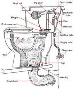 How a Toilet Works & Toilet Plumbing Diagrams in 2018