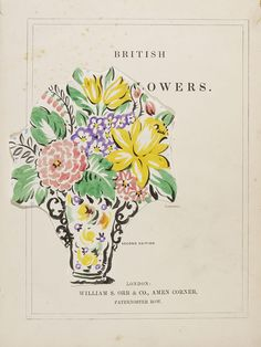 Jane Loudon (1807-1858)  Watercolour found in copy of 'British wildflowers'  Once owned by Morton Sundour Fabrics Ltd.