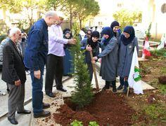 حملة تشجير في الجنوب Reforestation in South Lebanon #jihad_al_binaa