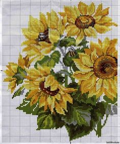 FLOWERS, made the sun - sunflowers - color - File Catalog - HOBBY