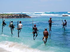 The south of Sri Lanka is known for its culture and its beaches, and if you put them together you may be lucky enough to witness this fishing phenomenon!