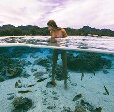 Hermosa foto donde se logra apreciar a los animales acuaticos y un bello paisaje: Pescados y una chica.