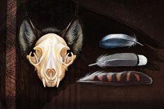 Fur, feathers and lynx skull by AlsaresLynx