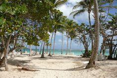 Des plages de sable blanc à côté du Verger de Sainte Anne - Guadeloupe