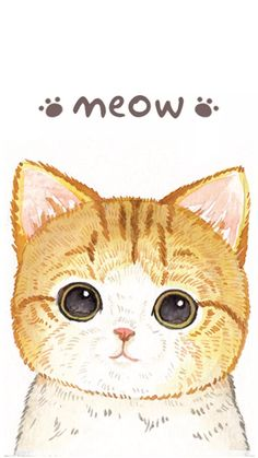 MonChatDore is coming soon - Cat Phone Wallpaper - Cartoon Wallpaper, Cat Phone Wallpaper, Tier Wallpaper, Cute Cat Wallpaper, Animal Wallpaper, Cat Background, Image Chat, Dibujos Cute, Kawaii Cat