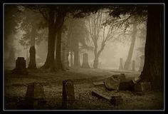 Greenock Cemetery in the mist http://fc-foto.com/22959839