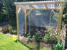 Bildergebnis für tomatenhaus selber bauen