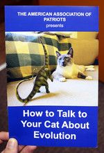 How To Talk To Your Cat About Gun Safety | Microcosm Publishing