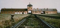 Prawda o Auschwitz według ofiary Auschwitz