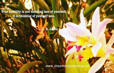 True humility is not thinking less of yourself, it is thinking of yourself less. - C. S. Lewis #dreamsdocometrueblogs #inspirationalquotes…