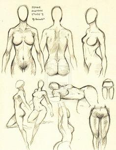 Female Anatomy Study 1 by ~0ImagInc0 on deviantART ✤ || CHARACTER DESIGN REFERENCES | 解剖 •  علم التشريح • анатомия • 解剖学 • anatómia • एनाटॉमी • ανατομία • 해부 • Find more at https://www.facebook.com/CharacterDesignReferences & http://www.pinterest.com/characterdesigh if you're looking for: #anatomy #anatomie #anatomia #anatomía #anatomya #anatomija #anatoomia #anatomi #anatomija || ✤