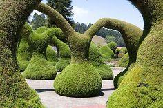 https://flic.kr/p/4vnh7j | Topiary | Zarcero, Costa Rica
