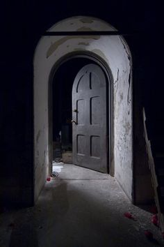 Basement Door - Photo of the Abandoned Buffalo State Hospital