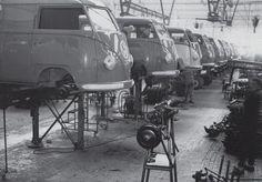 VW Transporters at Wolfsburg