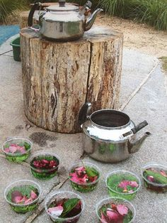 "Fairy soup kitchen fun at St Helens District High School Kindergarten ("",) I love the tree stump! Forest School Activities, Nature Activities, Outdoor Activities, Reggio Emilia, Outdoor Education, Outdoor Learning, Sensory Garden, Sensory Play, Sensory Table"