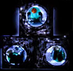 The furious Chintemani // Gözü dönmüş çintemani  -The lights off mode // Işıksız mod  160x160 cm  Mixed media in Polyester // Polyester içine karışık teknik 2012 Carnivals, Deconstruction, Perception, Carnavals, Carnival