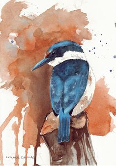 Kingfisher Painting bird ART print of watercolor by Splodgepodge, $15.00
