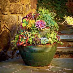 "Want this in my office! Succulents are both heat and drought tolerant. Stack your pots. Fill glazed pots with a mixture of 3 parts moistened potting soil and 1 part sand (or use Cactus mix). Put the small pot inside the larger one, leaving room toward the front. Plant succulents shoulder to shoulder. ""Water only when the soil is dry to the touch, but don't mistake low water for no water,"""