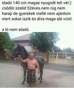 Horse Facts, Horse Riding, Haha, Funny Pictures, Jokes, Random Stuff, Harry Potter, Fantasy, Humor