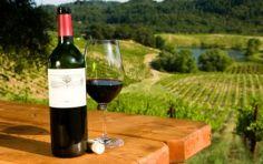Wine Tasting and Wineries in El Dorado County * Wine Country Placerville California Tasting Room, Wine Tasting, Puerto Vallarta, Beer Calories, One Glass Of Wine, Barolo Wine, California Wine, Valley California, Gastronomia