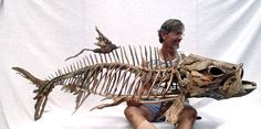 A tarpon Skeleton sculpture by Tony Fredriksson from driftwood. www.openskywoodart.com